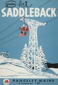 Saddleback Poster
