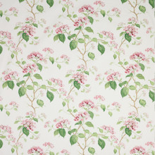 Cowtan And Tout Summerby Chintz, Pink Green