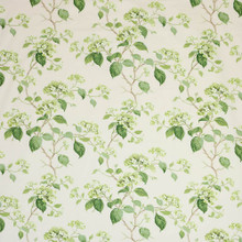 Cowtan And Tout Summerby Chintz,  Leaf Green