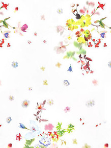 Scalamandre Floral Fabrics
