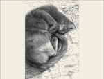 """Epson archival print of line drawing by Jan Cummings Good Special 2021 open edition  16"""" x 21""""  Unframed"""