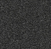 Forbo Tessera Teviot Carpet Tiles 351 jet