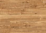 Polyflor Camaro Wood PUR Nut Tree 2202