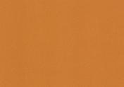 Polyflor Silentflor PUR Burnt Orange 9981
