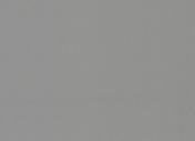 Polyflor Silentflor PUR Storm 9973
