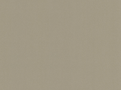 Polyflor Silentflor PUR Moleskin 9975