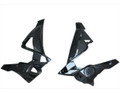 Radiator Covers in Glossy Twill Weave Carbon Fiber for BMW S1000R 2014