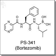 PS-341 (Bortezomib).jpg