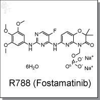 Картинки по запросу Fostamatinib disodium