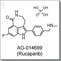 AG-014699 (PF-01367338, Rucaparib).jpg