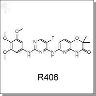 R406.jpg