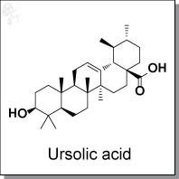 Ursolic acid.jpg