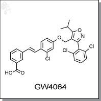 GW4064.jpg