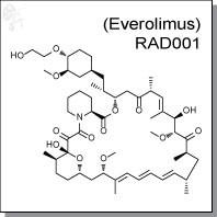 RAD001 (Everolimus).jpg