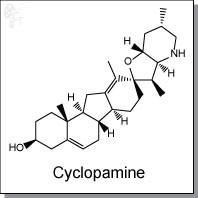 Cyclopamine.jpg