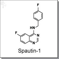 Spautin-1.jpg