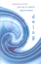 Delog Dawa Drolma: Journey to Realms Beyond Death, translated by Richard Barron