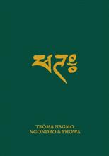 Troma Nagmo: Ngondro & Phowa (Book 3)