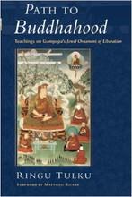 Path to Buddhahood: Teachings on Gampopa's Jewel Ornament of Liberation by Ringu Tulku
