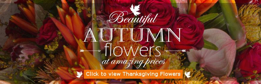 Thanksgiving flowers Test