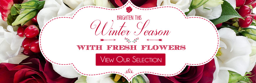 Christmas and Winter Flowers from inbloom with never any sales tax.