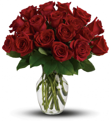If you're involved in a serious relationship, declare your love loud and clear with 18 gorgeous red roses in a sparkling clear glass vase. One dozen roses makes a glorious gift, but 18 - off the charts. She'll be so glad she chose you.