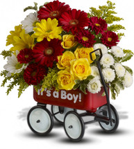 Hitch your wagon to a star! This little red wagon is a flower arrangement and nursery decoration all in one. A top-selling baby gift, it's filled with bold blooms of red, yellow and white.  Delivered in a shiny metal wagon overflowing with flowers and greens including red miniature gerberas, yellow spray roses and daisies.