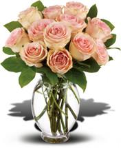Delicate Pink Dozen Roses