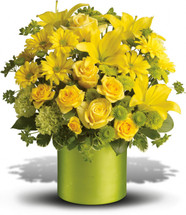 Say it with sweetness. Say it with flowers. Say it with sunshine. A bouquet this brilliant can deliver almost any sentiment - birthday, congratulations, thinking of you... you name it. When you want to say something beautifully, this bouquet beckons.
