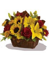 Send warm autumn sunshine to a special friend or relative with this golden gift basket of flowers. Yellow lilies and sunflowers make everyone smile!