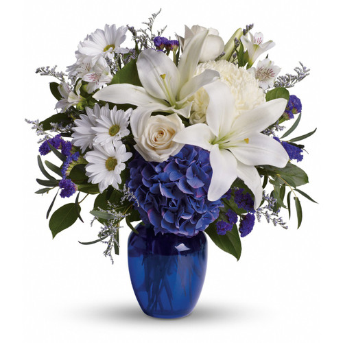 Brighten the home with the peace and beauty of a bright blue sky. This beautiful bouquet pairs pure white flowers with deep blue blooms in a gorgeous blue glass vase. Blooms such as blue hydrangea, crème roses, graceful white Oriental or Stargazer lilies, white alstroemeria, a white disbud mum, purple statice and lavender limonium are accented by seeded eucalyptus and salal in a stunning cobalt blue glass vase.