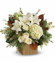 Give the gift of modern winter-white style with this breathtaking bouquet, hand-arranged in a chic cube, which may vary.  This winter bouquet includes white hydrangea, white roses, white asiatic lilies, magnolia leaves, seeded eucalyptus, spiral eucalyptus, flat cedar and white pine.