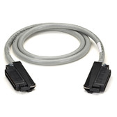 CAT5 25-Pair Telco Cable, PVC, Straight-Wired, AVAYA Style, Male 50-Pin Telco to Male 50-Pin Telco, 5-ft. (1.5-m)