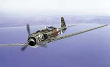 FW-190 Luftwaffe