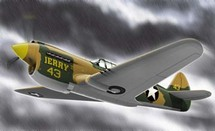 P-40 Curtiss Jerry`s 43 WWII