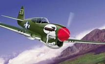 P-40 Curtiss White Skull WWII