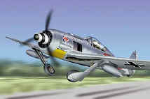 FW-190 Focke-Wulf Luftwaffe