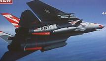 "F-14 Tomcat US Navy ""Sundowners"""