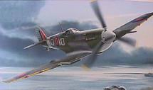 Spitfire Mk.V RAF 401 Sqn