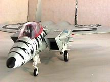 F-15 Eagle U.S.A.F. 50th Anniversary Tiger Meet