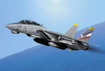 "F-14 Tomcat US Navy ""Bounty Hunters"" VF-2"