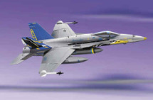 "F/A-18 Hornet US Navy ""Marauders Show Bird"""