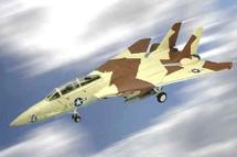 "F-14 Tomcat US Navy VF-24 Fighting Renegades, ""Thief of Baghdad"""