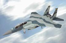 F-15 Eagle U.S.A.F. 65th Aggressor Squadron Nellis AFB, Nevada