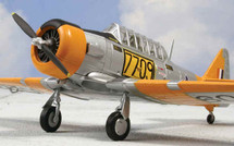 T-6 Texan Harvard NO. 40 Sqn., Central Flying School, South Africa Air Force