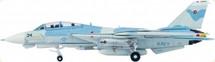 F-14A US Navy Naval Fighter Weapon School, NAS Miramar CA, TOPGUN 34, POWER PUFF Scheme