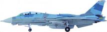F-14A US Navy Naval Fighter Weapon School NAS Miramar CA, TOPGUN 30, SPLINTER Scheme