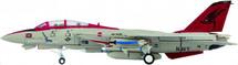 "F-14B US Navy VF-101 ""Grim Reapers"", CFWL, NAS Oceana"