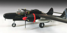 "P-61B Black Widow ""Black Panther"""