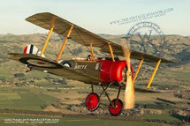 "Sopwith Pup ""Betty"" Mahogany Display Model"